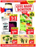 Lidl brochure with new offers (56/116)